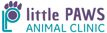 Little Paws Animal Clinic